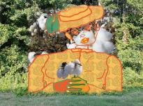 Aug 2-13 '19 Dover, DE http://www.Crawford-Style.Wix.com\LoriBCrawfordArt